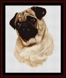 Pug - Robert J. May Cross Stitch Pattern By Cross Stitch Collectibles