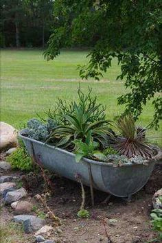 Rustic Galvanized Tub One day my husband was helping to rip down an old farm house. In the attic he found an old galvanized metal bathtub. He knew I would be delighted with The post Rustic Galvanized Tub appeared first on Garden Ideas. Rustic Gardens, Unique Gardens, Outdoor Gardens, Container Plants, Container Gardening, Gardening Tools, Galvanized Tub, Pot Jardin, Backyard