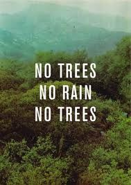 Why are #trees so important? #savetheplanet #green  be #eco  Help us! For every green act we plant a tree!  http://www.motleygreen.com