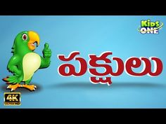 Kids Video Songs, Kids Videos, Kids Nursery Rhymes, Rhymes For Kids, Birds For Kids, Animals For Kids, Names Of Birds, Bird Identification, Different Birds