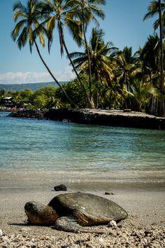Place of Refuge, Travel Photo Mondays #5 | Travel Photo Discovery #Hawaii #PlaceofRefuge