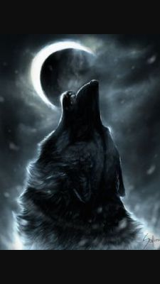 Your animal is  A wolf you are a strong person who never gives up you have very good friends you have a will like no other. You are a fighter and will protect your pack no matter what.