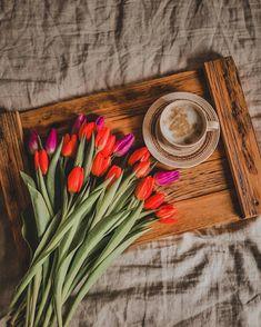 Coffee Vs Tea, Coffee Shop, Beautiful Flowers, Beautiful Pictures, Food Presentation, Cool Wallpaper, Morning Coffee, Tulips, Tea Cups