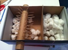 Build your own cotton gin to help students understand how it worked.
