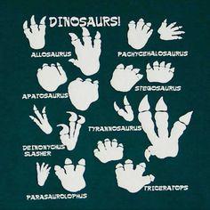 Dino Footprints.