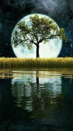 Life just has more fun with Kwai. Beautiful Nature Pictures, Beautiful Nature Wallpaper, Beautiful Moon, Amazing Nature, Beautiful Landscapes, Fantasy Landscape, Landscape Art, Landscape Paintings, Moon Images
