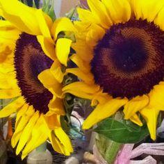 Sunflowers always make me think of my mom.