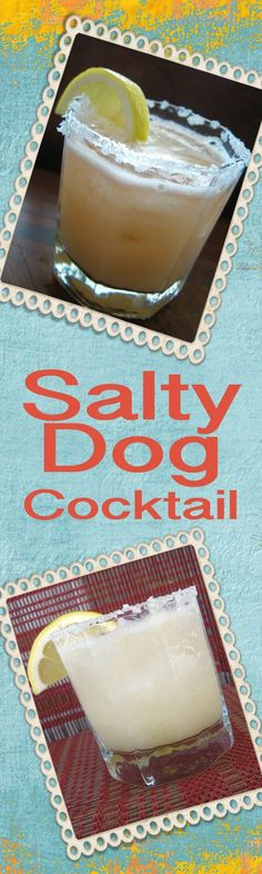 The Salty Dog Cocktail is my new favorite drink recipe! Made with grapefruit juice and vodka (or gin), it's light and refreshing and no refined sugars! | delishable.net
