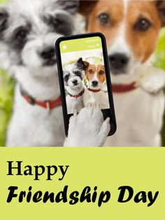 Send Free Selfie Dogs - Happy Friendship Day Card to Loved Ones on Birthday & Greeting Cards by Davia. It's free, and you also can use your own customized birthday calendar and birthday reminders. Happy Friendship Day Card, Friendship Cards, Birthday Greeting Cards, Birthday Greetings, Card Birthday, Birthday Reminder, Birthday Calendar, True Words, Cute Puppies