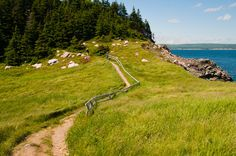 Pasture, forest, water source, southern exposure, live light on the land. Places Around The World, The Places Youll Go, Places To Go, Around The Worlds, Cabot Trail, Cape Breton, Water Sources, Fishing Villages, Future Travel