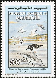 Common Ringed Plover stamps - mainly images - gallery format