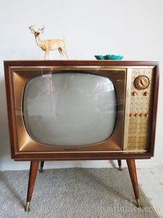 Old black and white TV sets of the 50's/60's..  3 channels and outdoor antenna or rabbit ears wrapped with aluminum foil.  I was about 10 yrs. old before we got one. Similar to this one best I can remember.
