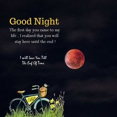 Good Night Images – Nothing can be as great as having some attractive Good Night Images Wallpaper HD Beautiful Good Night Messages, Good Night Hug, Good Night Text Messages, Good Night Quotes Images, Photos Of Good Night, Good Night Love Messages, Romantic Good Night, Good Night Love Images, Good Night Greetings