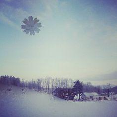 【oizu36】さんのInstagramの写真をピンしています。《おはようございます  本日マイナス20度越え  今年一番の寒さ  窓も半分雪の結晶❄  愛犬も散歩するもすぐ家入る🐶💦 ❄ #北海道#旭川#桜岡#北国より#極寒#寒すぎ#さすがにつらい#空#山#林#木#冬景色#雪景色#窓#景色#山暮らし#田舎暮らし#hokkaido#asahikawa#sakuraoka#window#cold#sky#snow#mountain#tree#house#Scenery#life》