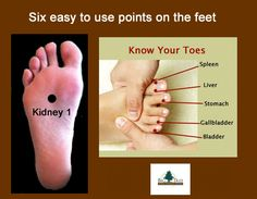 Six of the twelve meridians begin or end on the feet! Regardless of the type of massage you are practicing, integrating meridian massage is simple! By applying pressure to each of these points you activate all six meridians quickly and effectively.
