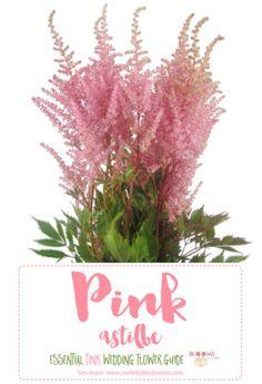 Pink wedding flower: