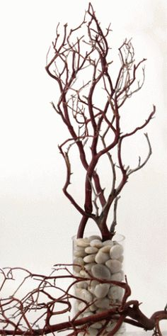 Making Manzanita Branch Centerpieces As you will see, Manzanita branches make for some lovely, and sometimes, very elegant wedding recepti. Tree Branch Decor, Branch Art, Manzanita Branches, Tree Branches, Manzanita Wedding, Willow Branches, Trees, Sunflower Wedding Invitations, Deco Nature