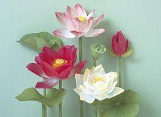 Floral Paper Sculpture   Created by Yoko Kogami of Kogami Cr…   Flickr