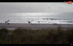 Another great shot from one of our #beach cams