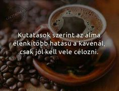 Hilarious, Funny, Haha, Jokes, Coffee, Thoughts, Google, Proverbs Quotes, Kaffee