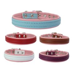 Pet products New PU edging pet collar double layer dog collar strong bottom dog chain wholesale 1.5cm Width #Affiliate