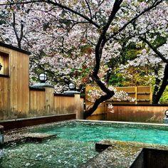 日本でしかできない贅沢!全国の『花見露天』ができる温泉宿7選 | RETRIP