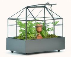 Terrarium gift idea from H Potter with a hinged door in the roof.  http://www.hpotter.com/garden-gifts/rectangle-terrarium-with-door/