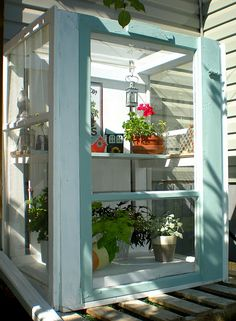 Baby greenhouse from 3 windows - A great idea for getting plants started when you just don't have room (or sun!) on your windowsills