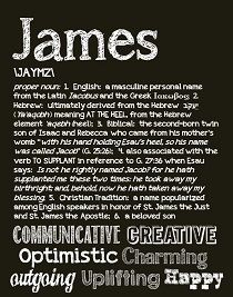 James...many of these adjectives perfectly describe my James. <3