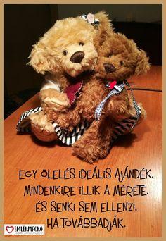Egy ölelés ideális ajándék. Mindenkire illik a mérete, és senki sem ellenzi, ha továbbadják. Teddy Bear, Toys, Animals, Activity Toys, Animales, Animaux, Clearance Toys, Teddy Bears, Animal