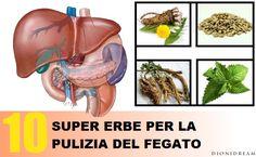 10 SUPER ERBE PER RIPULIRE IL FEGATO