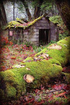 Small Old Farm House Forgotten