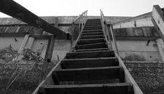 Suba o primeiro degrau da fé. Você não tem que ver toda a escadaria antes de subir o primeiro degrau.