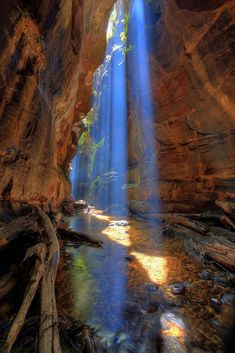 Creek Canyon, Blue Mountains / Australia (by. Rocky Creek Canyon, Blue Mountains / Australia (by Albert.Rocky Creek Canyon, Blue Mountains / Australia (by Albert. Beautiful World, Beautiful Places, Beautiful Moments, Beautiful Pictures, Landscape Photography, Nature Photography, Blue Mountains Australia, Rocky Creek, Image Nature
