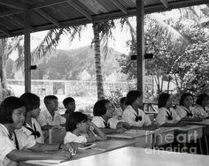 Phi Phi Island, #Thailand, #School Days #Poster