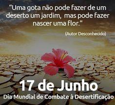 ALEGRIA DE VIVER E AMAR O QUE É BOM!!: DIÁRIO ESPIRITUAL #152 - 17/06 - Expansão