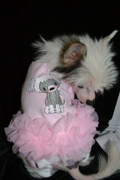 Chinese Crested pjs by PJSforPups on Etsy, $32.00