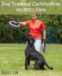 Dog Training Certification: What You Need To Know: Find out what you need to know about Dog Training Certification to find the best possible trainers for your new family friend! The right training matters.