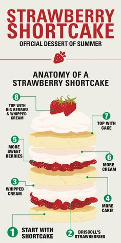 This chart that shows how to assemble a strawberry shortcake: | Here Are 22 Diagrams For Anyone Who's Obsessed With Dessert