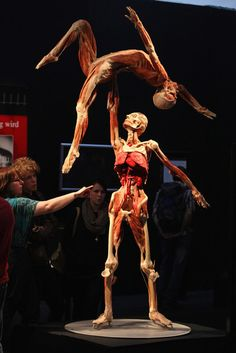 Visitors look at plastinated human corpses posed to look like figure skaters