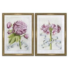 Check out this item at One Kings Lane! Narcissus & Rosa Sinensis Diptych