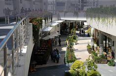 Paseo Chapultepec Tijuana
