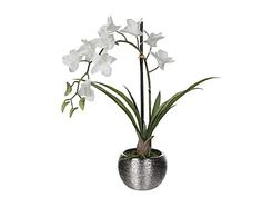 Artificial plant Vanda Orchid I, white / silver, H 40 cm