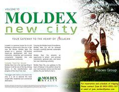 MOLDEX NEW CITY