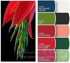 (3) Gallery.ru / Фото #90 - сочетание цвета оттенки красного и розового…