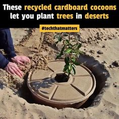 Circular Economy, Landscaping Plants, Plant Design, Sustainability, Recycling, Survival, Tech, Life, Upcycle