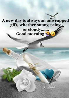 Good Morning Greeting Cards, Good Morning Text Messages, Good Morning Texts, Good Morning Funny, Good Morning Good Night, Morning Msg, Happy Morning Quotes, Happy Monday Morning, Good Day Quotes