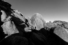 Title  Selfie II   Artist  Steven Reed  Medium  Photograph - Photography