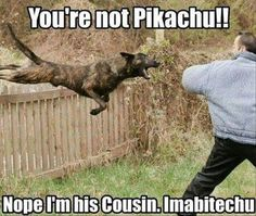 Funny Pictures Of The Day – 37 Pics...  http://lolsalot.com/funny-pictures-of-the-day-37-pics-19/  #Funny #Pic