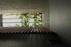 Light+Light House / Studio TonTon